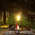 Fairy Tale Belgia